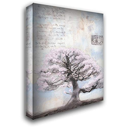 - Springtime Memories I 32x40 Extra Large Gallery Wrapped Stretched Canvas Art by McCavitt, Naomi