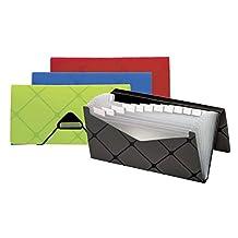 Pendaflex Cheque-Size 13-Pocket File Pocket