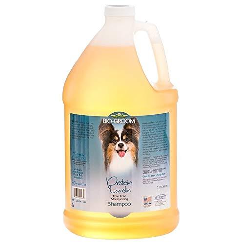 (Bio-Groom Protein Lanolin Pet Conditioning Shampoo, 1-Gallon)