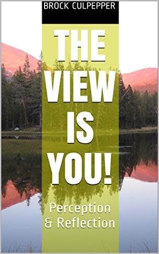 The View is You!: Perception & Reflection