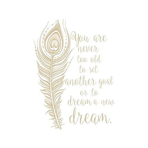 nbnio Wall Art Decor Decals Removable Mural You are Never Too Old to Sets for Bedroom Living Room Home -