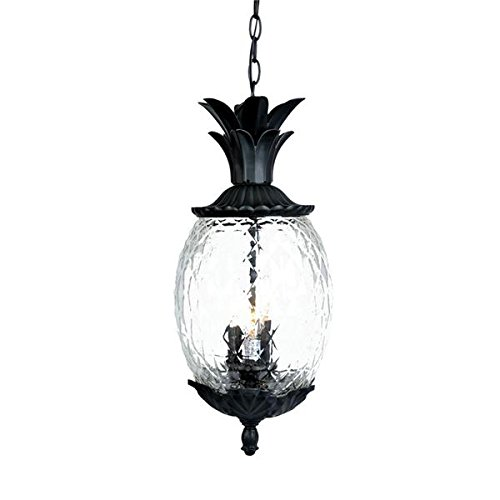 Tropical Outdoor Hanging Lights - 1