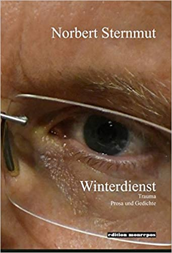 """Interview  mit Norbert Sternmut zu seinem Buch """"Winterdienst"""" (2020)"""
