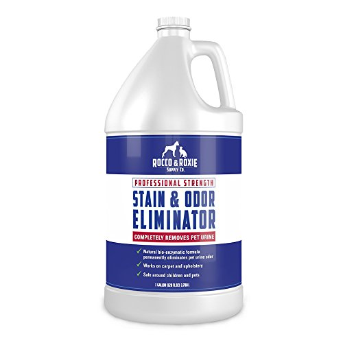 Professional Strength Stain & Odor Eliminator - Enzyme-Powered Pet Odor & Stain Remover for Dog and Cat Urine - (1 gallon) (Oxy Solution Carpet Stain Remover compare prices)
