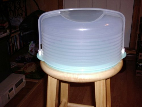 Tupperware Round Cake Taker Mint Green Base - Sheer Snow White Top