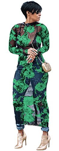 Womens Sexy Long Sleeve Turtleneck Floral Printed See-Through Bodycon Party Clubwear Dress (M, Green)