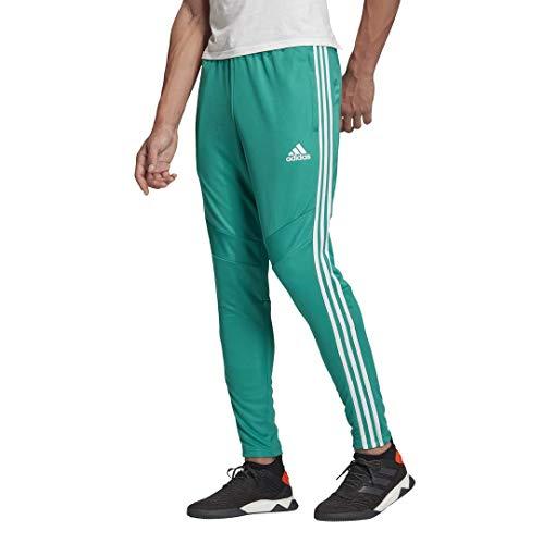 adidas Men's Standard Tiro 19 Pants, Glory