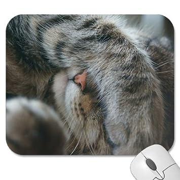 """Alfombrilla de ratón – 9.25 """"x 7,75"""" funda almohadillas de ratón"""