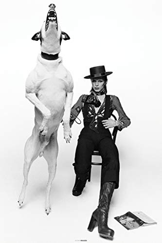 Pyramid International David Bowie and Jumping Dog by Terry O Neill Iconic Rock and Roll Music Image Cool Wall Decor Art Print Poster 24x36