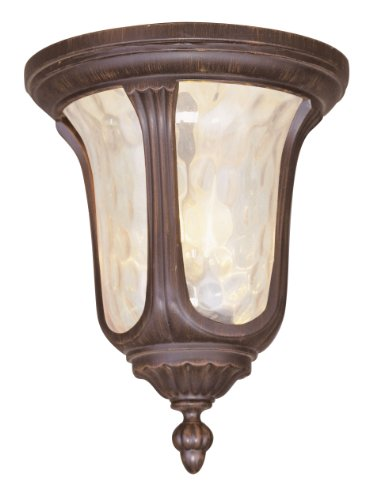 Livex Lighting 7661-58 Oxford 2 Light Outdoor Ceiling Mount, Imperial Bronze
