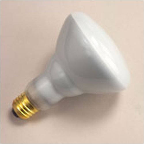 120 Watt Incandescent Flood Light Bulbs