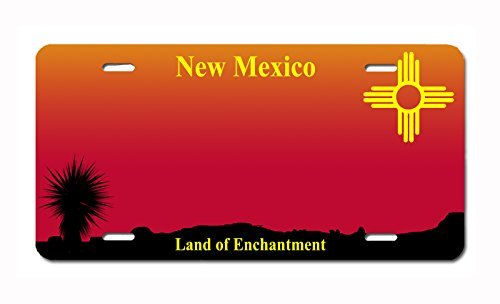 (Carpe Diem Designs Customizable U.S.State Front Plate License/Vanity Plate – Made in The U.S.A.)