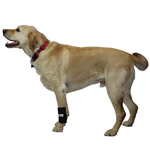 Walkin' Wrist Hugger Dog Brace | Carpal Wrist Joint Support for Dogs | Helps Canine Arthritis