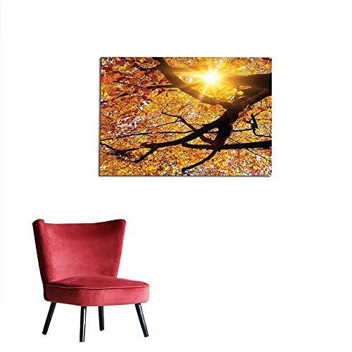 kungfu Decoration Art Decor Decals Stickers Nature,Sun Through Leaf Golden Color Vivid October Foliage Harvest Serene Paradise Photo Art,Orange Poster Print W35.4 x L23.6