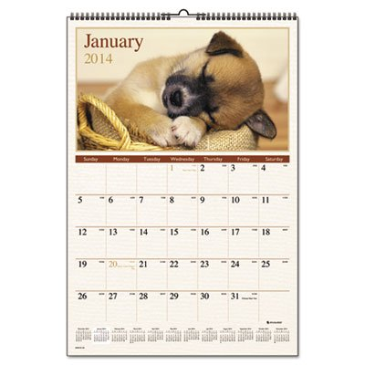 Puppies Photographic Monthly Wall Calendar, 15-1/2 x 22-3/4 (Monthly Puppies Wall Photographic Calendar)