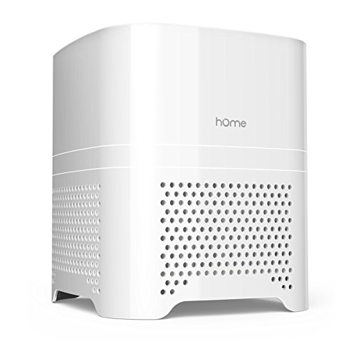 Air Ionizer Purifier - hOmeLabs 3 in 1 Ionic Air Purifier with HEPA Filter - Portable Quiet Mini Air Purifier Ionizer to Reduce Mold Odor Smoke for Desktop Small Room up to 50 Sq Ft - Travel Air Purifiers for Allergies