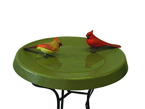 Birds Choice Olive Green Pedestal Heated Bird Bath by Birds Choice
