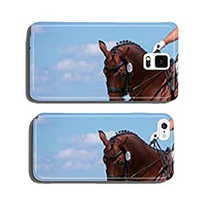 Portrait of dressage bay horse on sky background cell phone cover case iPhone6 Plus