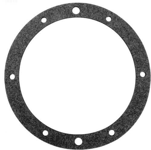 Pentair 79204600 Vinyl Gasket Replacement SpaBrite/AquaLight Pool and Spa Light Niche -