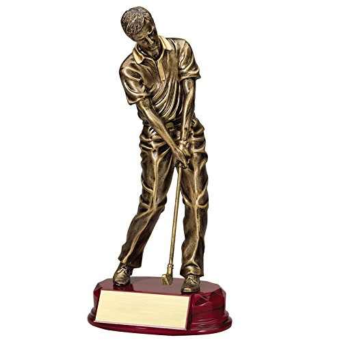 Customizable 11 Inch Antique Gold Resin Male Golf Figure Trophy, Includes Personalization