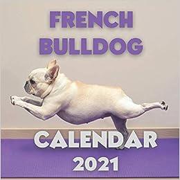 2021 French Bulldogs Wall Calendar
