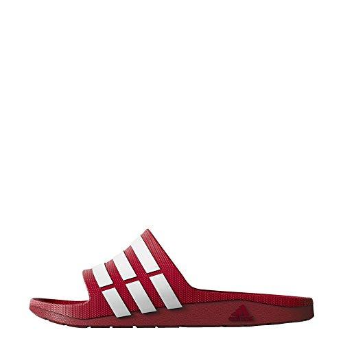 adidas Adilette Duramo Slide Badeschuhe Badelatschen, Größe:UK 17 - EUR 54 - 33.5 cm;Farbe:G15886 Rot - Weiß