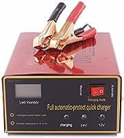 ETbotu - Cargador Universal para baterías de Plomo de 12 V ...