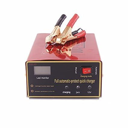 ETbotu - Cargador de batería Universal para Coche, 12 V/24 V, 140 ...