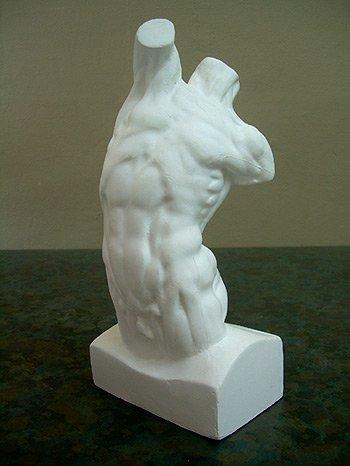 Plaster Cast Human Male Torso Model by Masters International