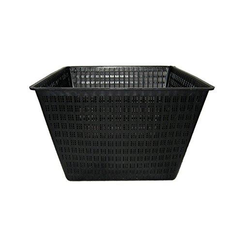 Algreen Pond Plant Square Basket, 15 x 11