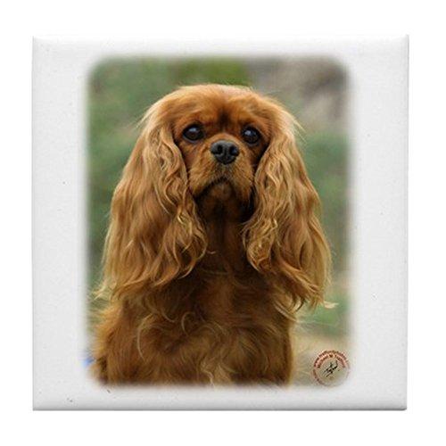 CafePress - Cavalier King Charles Spaniel 9F51D-10 Tile Coaste - Tile Coaster, Drink Coaster, Small Trivet