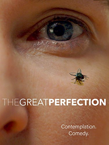 The Great Perfection (Best Nonprofits To Work For)
