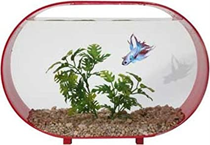 Zoo Med Betta House 2 Gallon Oval Racetrack Red: Amazon in