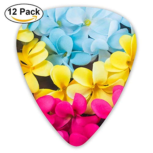 Plumeria Pick - Hallome Frangipani Colorful Flowers Exotic Plumeria Blue Pink Guitar Pick 0.46mm 0.73mm 0.96mm 12pack,Suitable For All Kinds Of Guitars