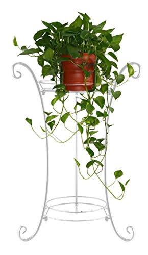 AISHN Classic Tall Plant Stand Art Flower Pot Holder Rack Planter Supports Garden & Home Decorative Pots Containers Stand (White) (Stand Door Front Plant)