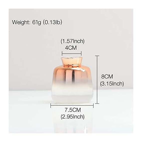 """SVY Flower Bud Ombre Vase, Desk Floral Glass Vase, Champagne Gold Color Stylish Decorative Scent Bottle Shape Flower Glass Vase (2.56"""" W 4.33"""" H) - High Qualiy with 14 Days Warranty -- 100% Satisfaction Guarantee. The flower bud vase is made of classic glass. Each vase features thick glass walls and weighted base to ensure durability. This vase is made using only high quality material. Stylish Design -- champange gold color stylishly display your favorite blooms in this bud vase, it's tube form and subtle lines create a warm and contemporary look and is perfect for any room in the home. Perfect For Plants -- The flower bud vase fits perfectly with floral stems or your favorite fresh flower (not included). - vases, kitchen-dining-room-decor, kitchen-dining-room - 41SOnpbCeCL. SS570  -"""