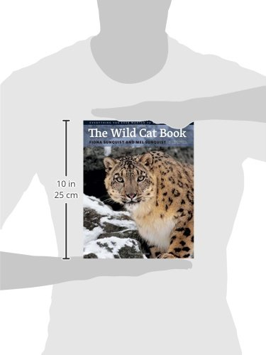 The Wild Cat Book Everything You Ever Wanted to Know about Cats
