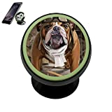 Coototo Pies Dog Pilot Puppy Vehicle Phone Disonnect Luminous Holder Magnetic Universal Cradle Stand Cars Dashboard Mount Strong Magnets Smartphones Kit