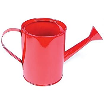 Small Metal Watering Can (Colors May Vary)