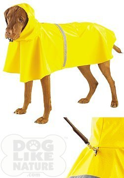 Amazon.com : Yellow Rain Jacket - Medium by Casual Canine : Pet ...