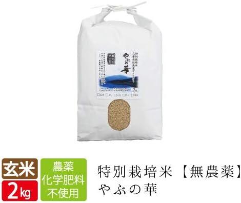 養父の華 玄米2㎏ 3分搗き