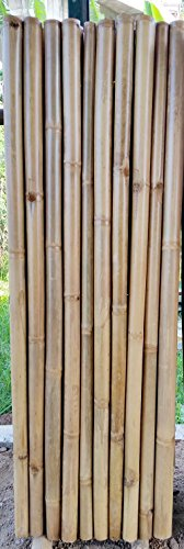Master Garden Products Extra Large 3 Bamboo Poles Fence, Natural Finish, 2u0027L