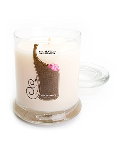 Eucalyptus Spearmint Candle - 10 Oz. Highly Scented White Jar Candle - Clean Candles Collection