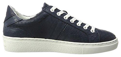 Gaastra Damen Cat Sld W Sneaker Blau (navy)