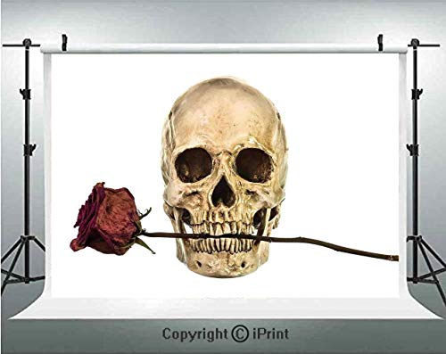 Gothic Decor Photography Backdrops Skull with Dry Red Rose in Teeth Anatomy Death Eye Socket Jawbone Halloween Art Decorative,Birthday Party Background Customized Microfiber Photo Studio Props,7x5ft, -