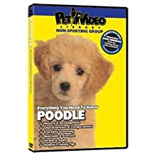 Pet Video Library - Poodle DVD