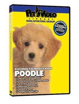 Pet Video Library - Poodle DVD Poodle Dvd