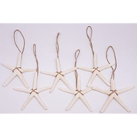 41SQDHysT9L._SS450_ Starfish Christmas Ornaments