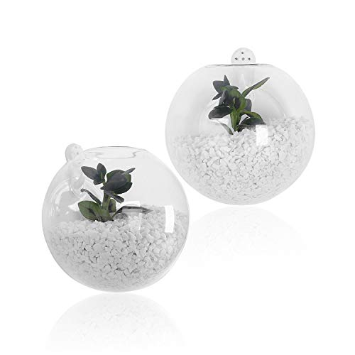 SWISSELITE Glass Hanging Planters Hanging Glass Terrariums, Plant Terrariums Set (2 Pack - Wall Beta Light