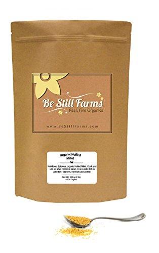 Organic Hulled Millet, 1 Pound - USDA Organic | Non-GMO | Ve